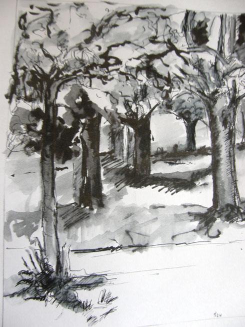 kersenboomgaard1-kl
